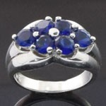 Exquisite Artistic Design Cut  Blue CZ 925 Sterling Silver Ring